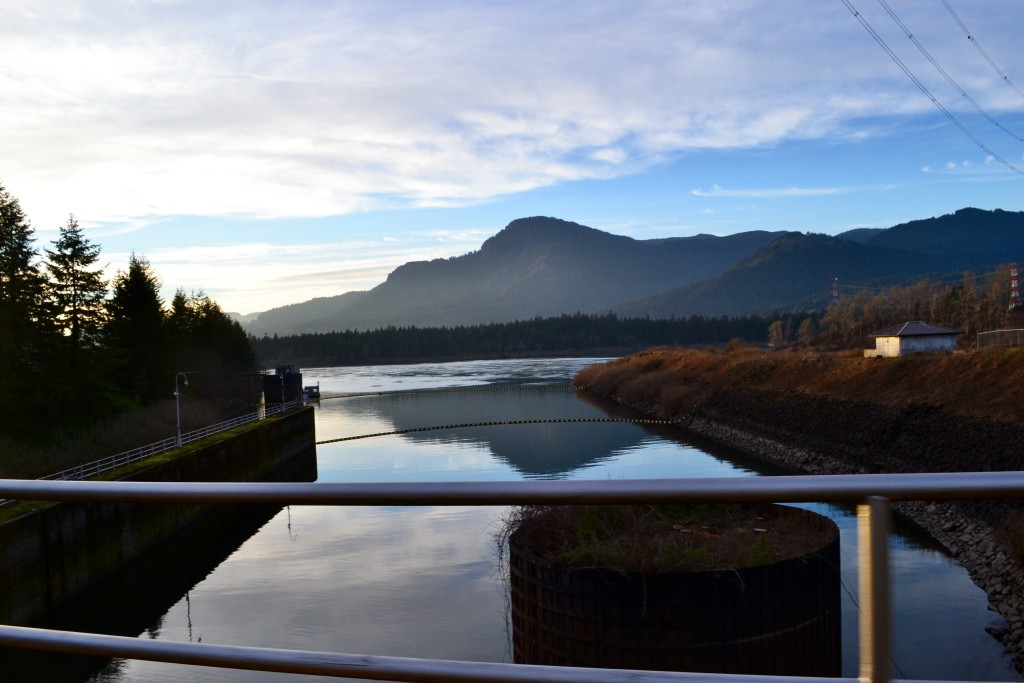 Bonneville lock and dam from the top